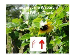 Fehu + Tiwaz Energetyczne Wsparcie