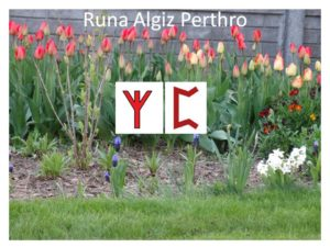 runa Algiz Perthro